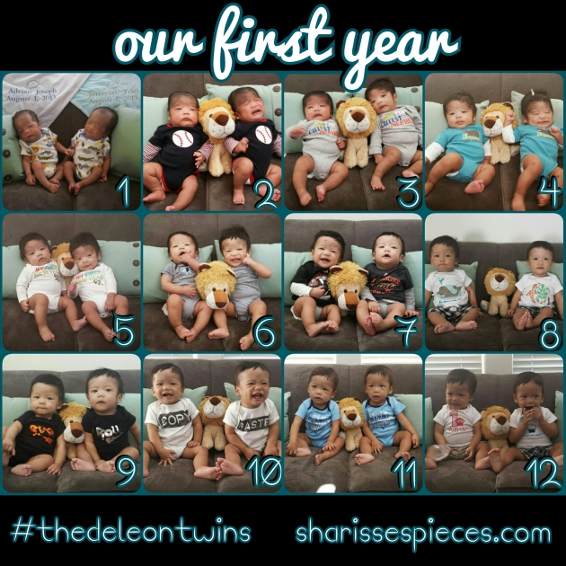 The DeLeons - First Year collage