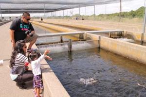 feeding fishies3