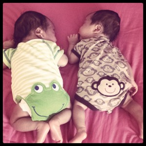 Little froggy JT and monkey AJ hanging out