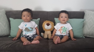The twins at 9 months